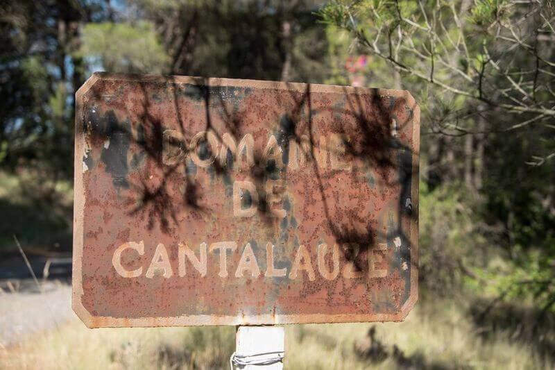 Panneau domaine de Cantalauze